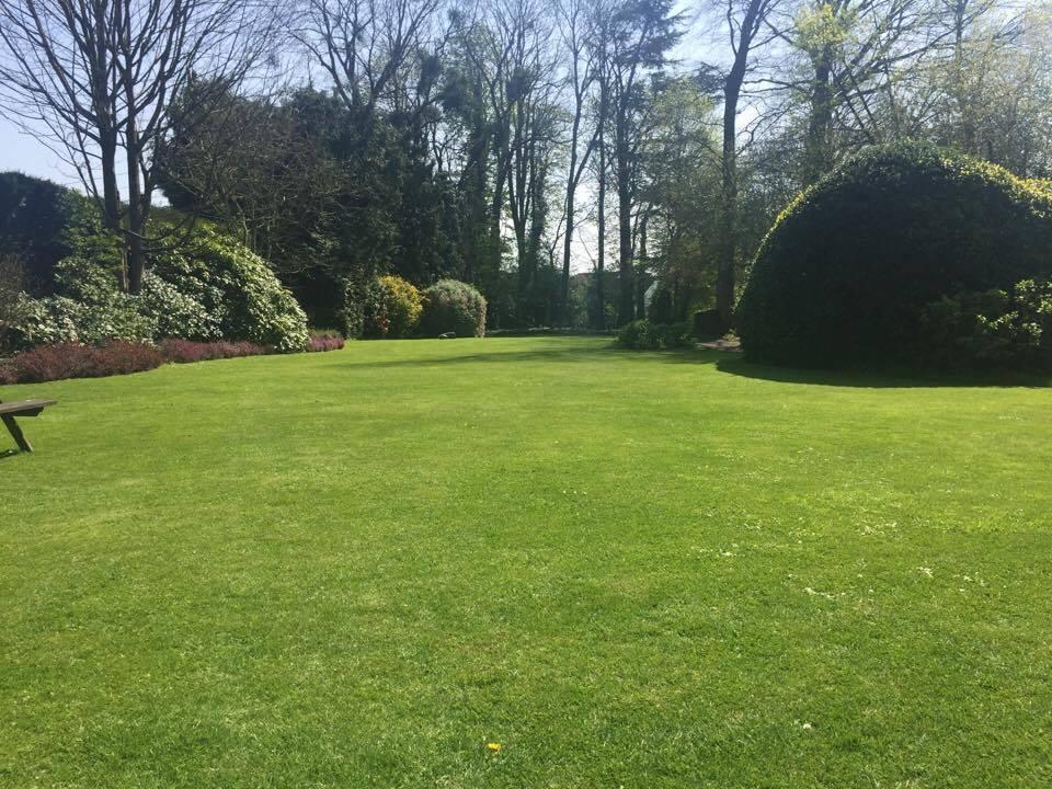 Visuel présentant le résultat de l'installation pour la référence : Magnifique pelouse grâce à Oborobo !