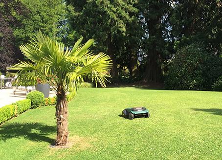 Visuel présentant le résultat de l'installation pour la référence : Superbe jardin chez Sylvie