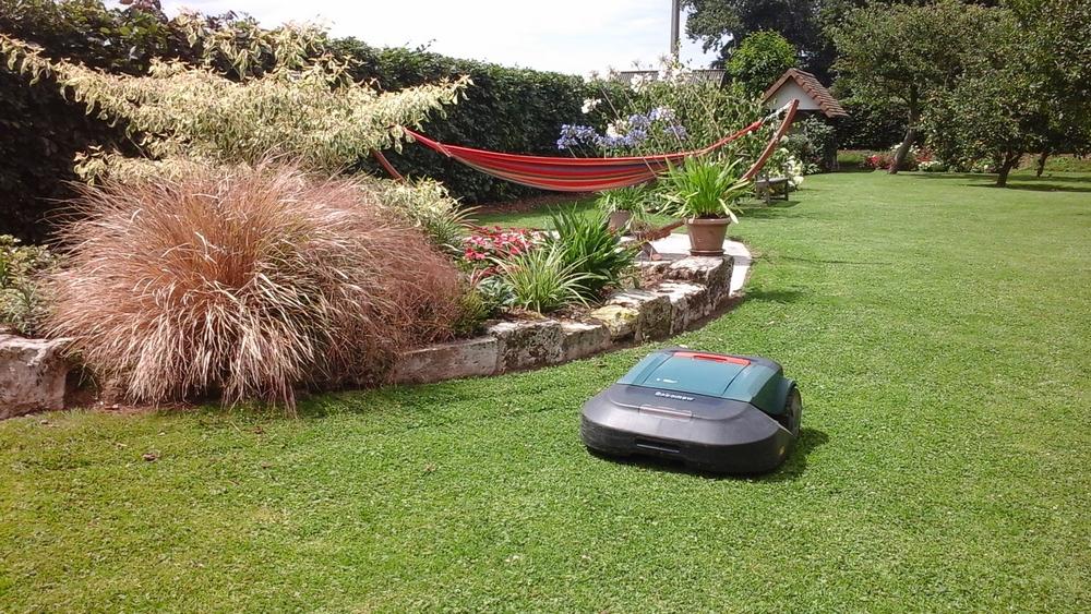 Visuel présentant le résultat de l'installation pour la référence : Une pelouse parfaite !